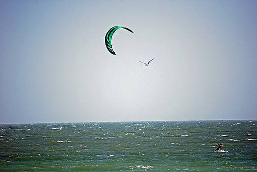 Sail Wind and Wings by Peter  McIntosh