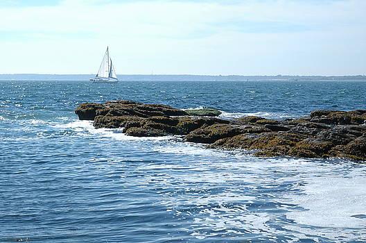 Sailboat by Dave Fischer