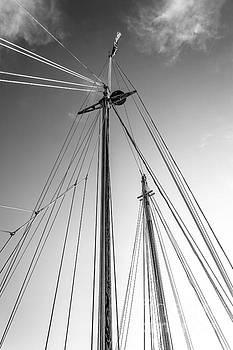 Sailboat Rigging by Joan McCool