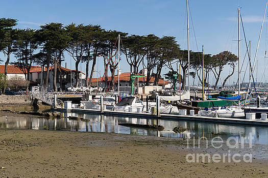 Wingsdomain Art and Photography - Sailboats At St Francis Yacht Club Harbor San Francisco California DSC3097