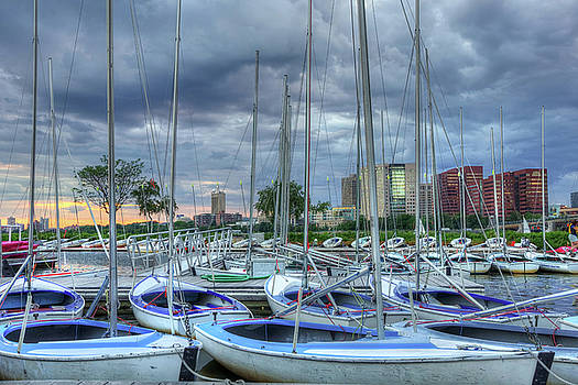 Sailboats Docked on the Charles River - Boston by Joann Vitali
