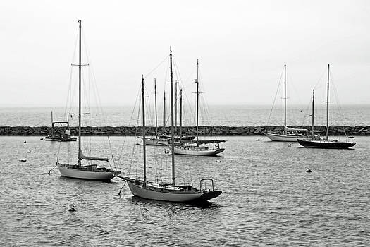 Sailboats, Martha's Vineyard by Brooke T Ryan