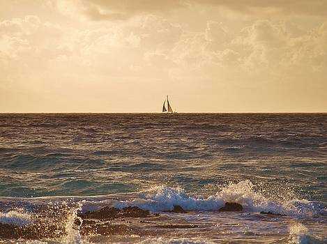 Sailing Away by E Luiza Picciano