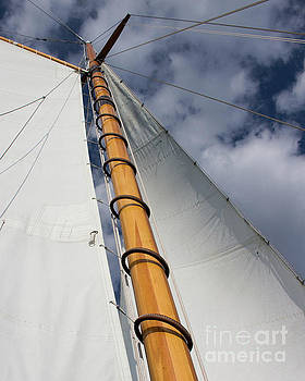 Sailing into the Clouds by Cheryl Del Toro