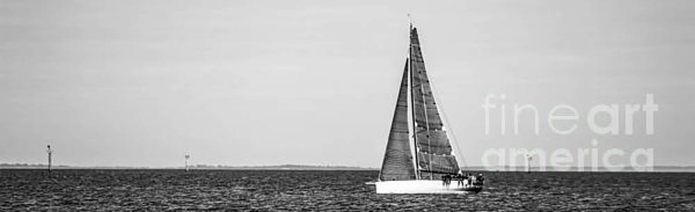 Sailing  by Naomi Burgess