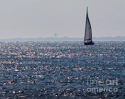 Sailing on Diamonds by Cheryl Del Toro