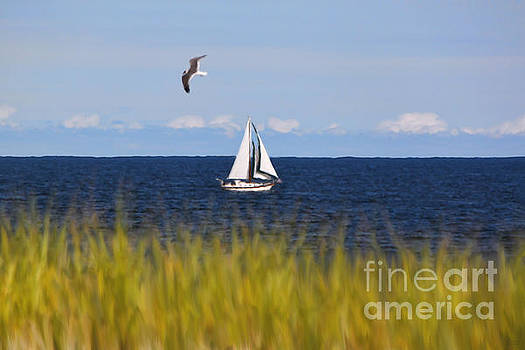 Sailing on Long Beach Island by Jeff Breiman