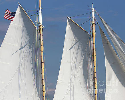Sails and Flag by Cheryl Del Toro
