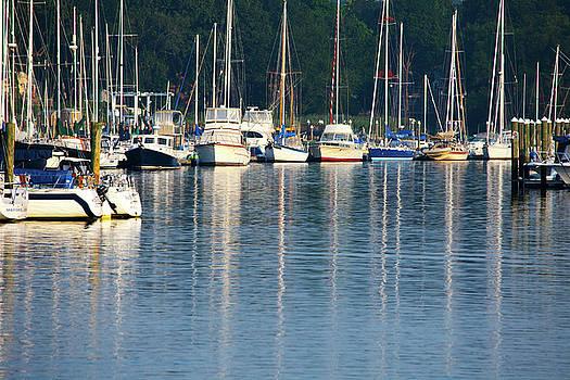 Karol Livote - Sails At Dock