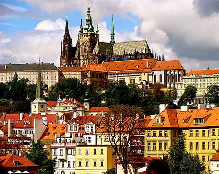 Saint Vitas and Castle Hill Prague by Ira Shander