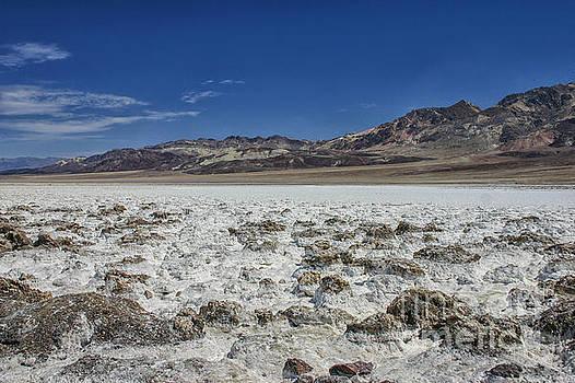 Patricia Hofmeester - Salt in Death Valley