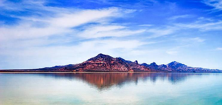 Salt Lake Mountain by Robert FERD Frank