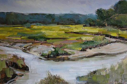 Salt Marsh Falmouth by James Reynolds