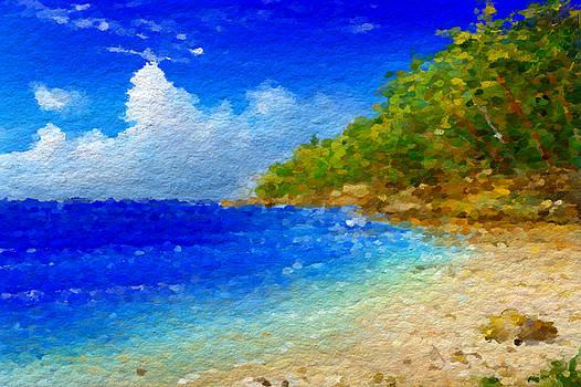 Salt water beach by Anthony Fishburne