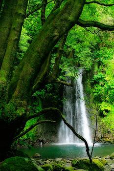Gaspar Avila - Salto do Prego waterfall