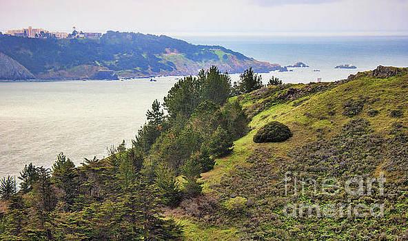 Chuck Kuhn - San Francisco Bay views