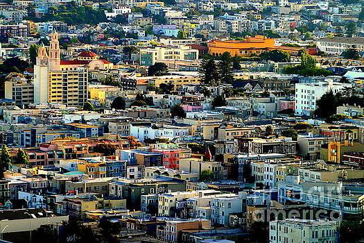 San Francisco California Scenic Landscape by Michael Hoard