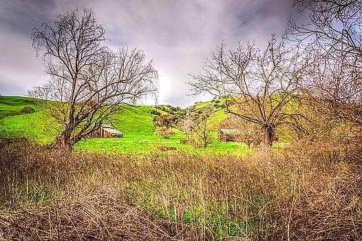 San Joaquin Barn by Spencer McDonald