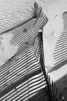 Sand and Sun by Robert Meanor