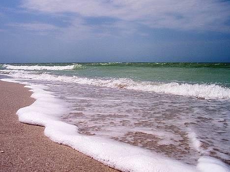 Sand and Surf by Anna Villarreal Garbis