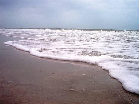 Sand and Surf III by Anna Villarreal Garbis