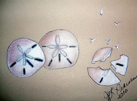 Sand Dollars 2 by Judy Pearson