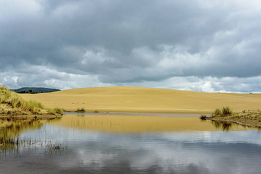 Sand Dune by Jerry Cahill