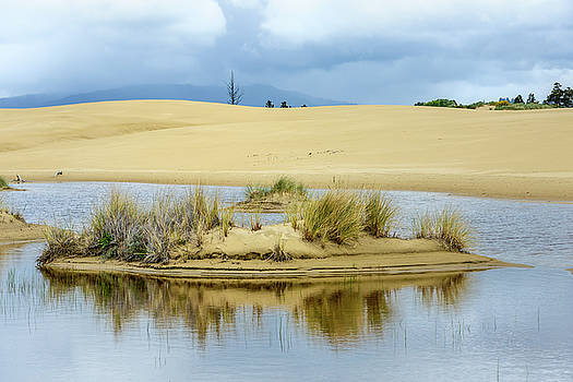 Sand Dunes and Water by Jerry Cahill