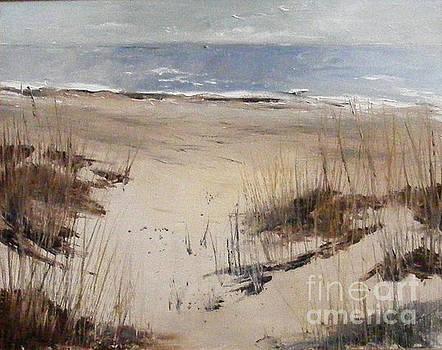 Sand Sea Grass by Steve Patton