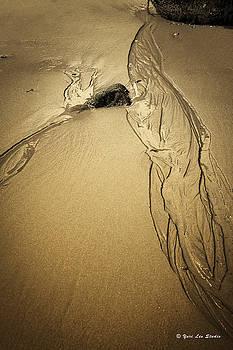 Sand Spirit, Rockport Massachusetts  by Yuri Lev
