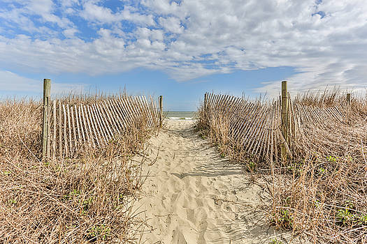 Sand Trail by Jimmy McDonald
