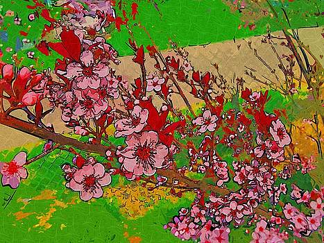 Sandcherry Abstract in Collage Paint by Skyler Tipton
