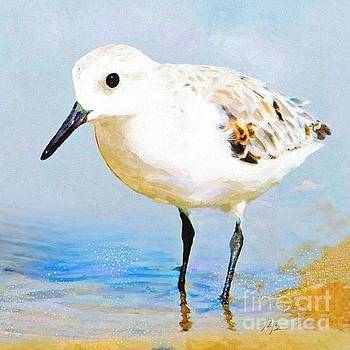 Sanderling by Tammy Lee Bradley