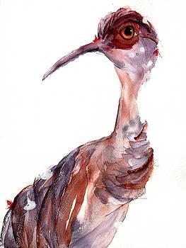 Sandhill Crane by Dawn Derman