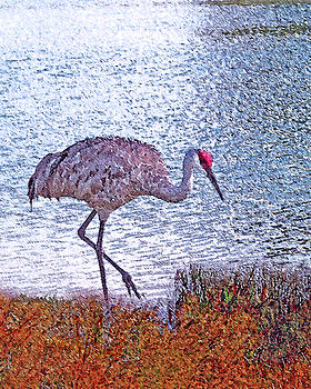 Sandhill Crane Stroll Painted by Adele Moscaritolo