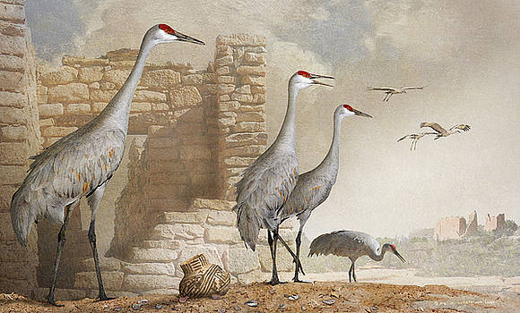 Sandhill Cranes At Hovenweep by R christopher Vest