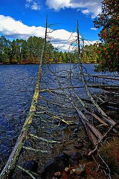 Sandwich Lake  by Bill Morgenstern