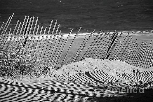 Sandy Beach Fence Landscape Photo by Melissa Fague