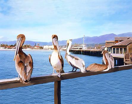 Kurt Van Wagner - Santa Barbara Pelicans