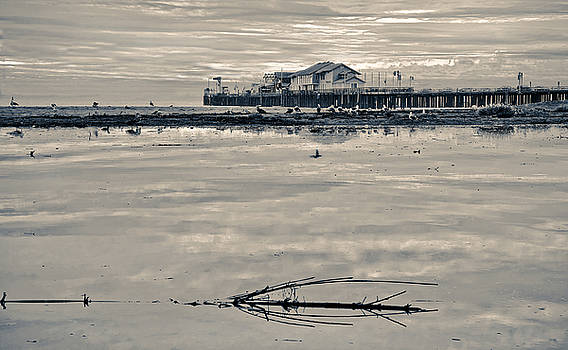 Santa Barbara Sterns wharf by Eyal Nahmias