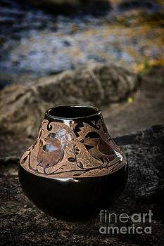 Jon Burch Photography - Santa Clara Bird Pot