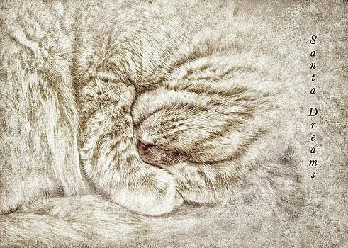 Santa Dreams by Kathi Mirto