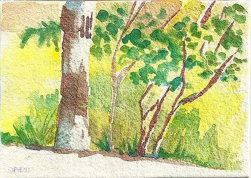 Sarris' Garden 4 by Pam Van Londen