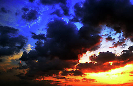 Saturated Dawn by Tammy  Shiver