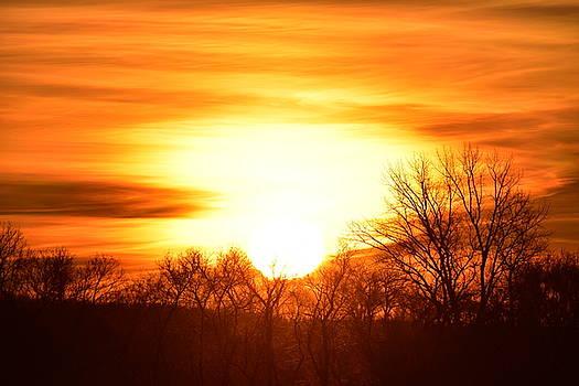 Saturday Mornings Sunrise by Dacia Doroff