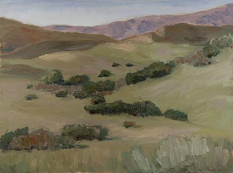 Satwiwa Valley by Todd Swart
