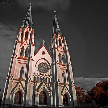 Rolf Bertram - Savanna Georia Church Color Infrared 74