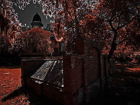 Rolf Bertram - Savanna Georia Colonial Park Cemetery Color Infrared 500