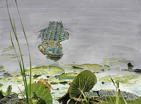 Savannah Gator by Tom Hedderich