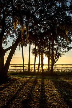 Savannah Sunrise 01 by Brent L Ander